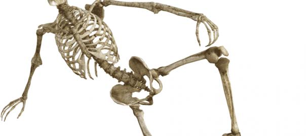 scheletro-girodmedical-min